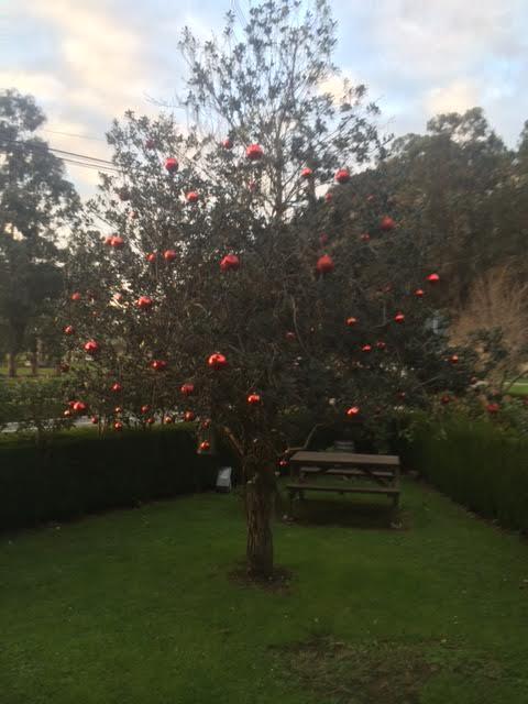 Navidades calentitas en el rinc n del sella casa rural el rinc n del sella - Casa rural navidad ...