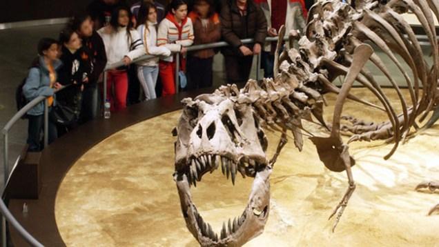 Jura Museum Asturias