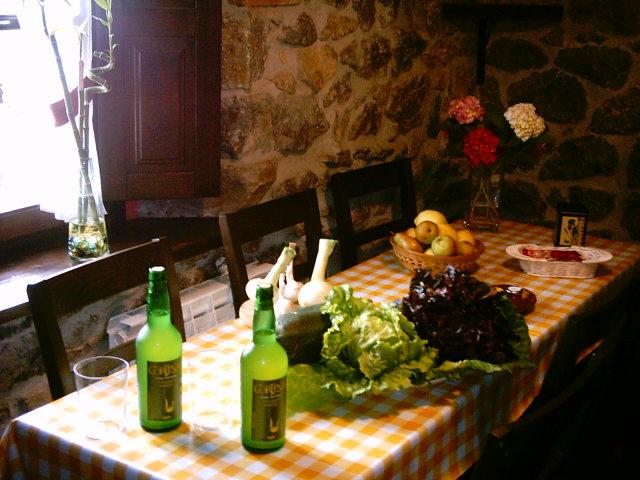Küche Fienhaus Rincon del Sella