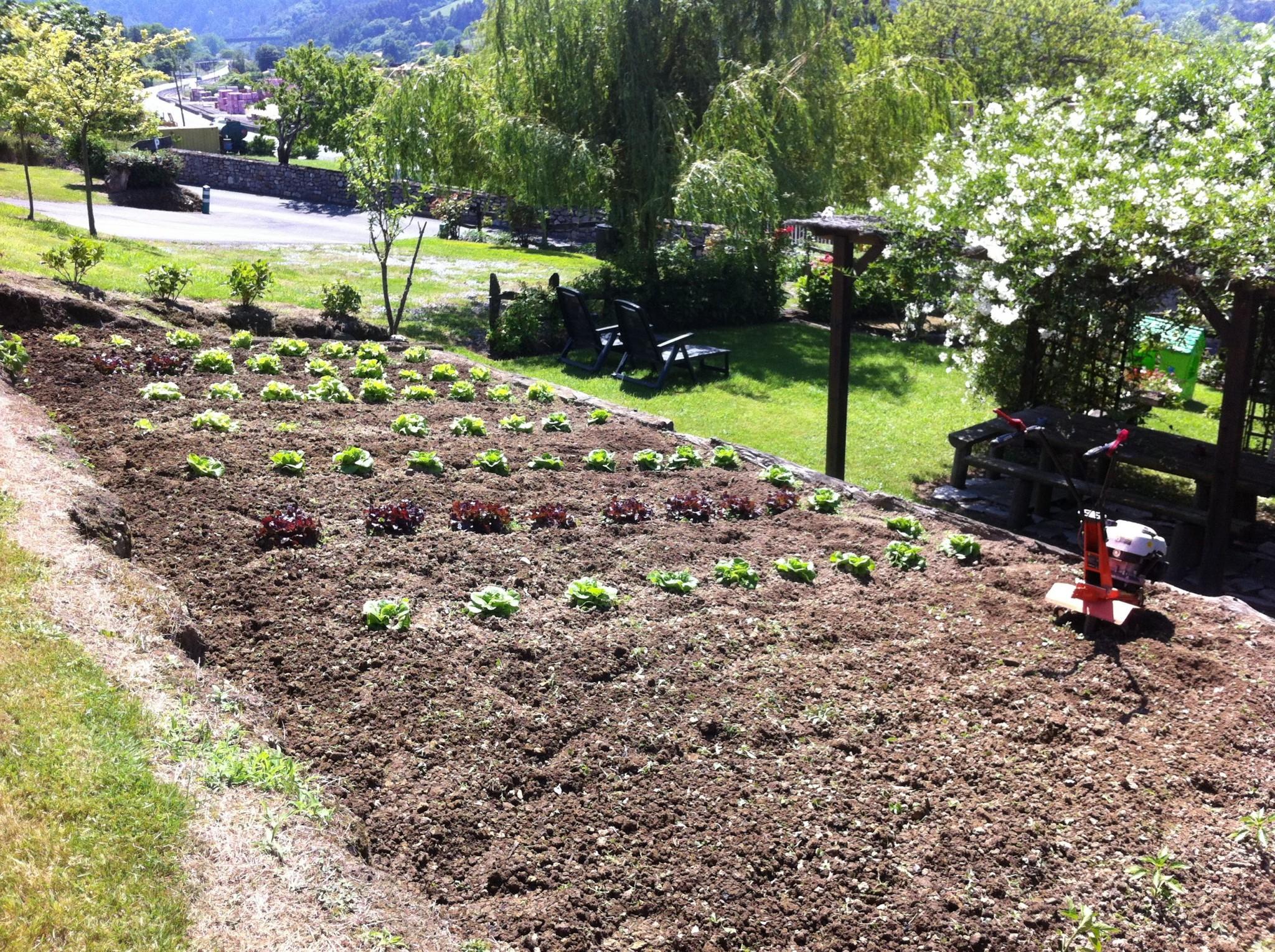 The garden Asturias cotage Ribadesella