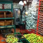 Preparación de la manzana